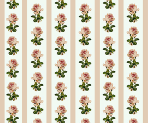 background, pattern, and rose image