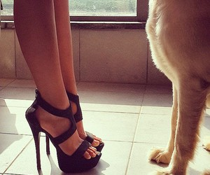 girly, heels, and lovely image