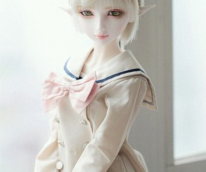 ball jointed doll and bjd image
