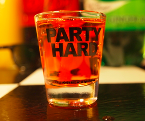 drink, party, and party hard image