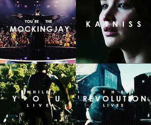 catching fire, katniss everdeen, and mockingjay image
