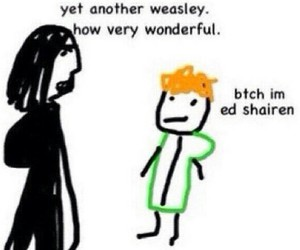 funny, weasly, and harry potter image