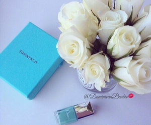 blue, roses, and love image