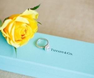 diamond, ring, and rose image