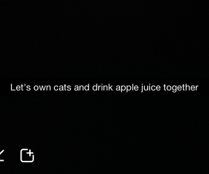 apple, black, and cats image