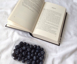 book and blueberry image