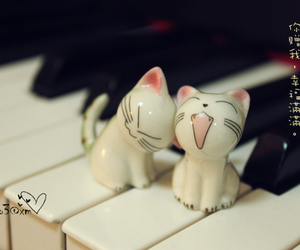 kitty, piano, and cat image