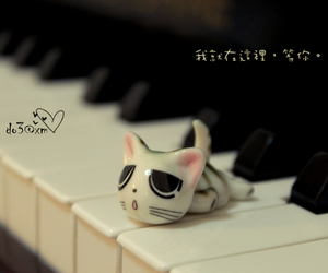 cat, kitty, and piano image