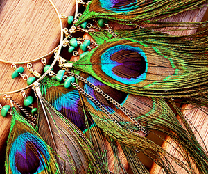 earrings, feather, and peacock image