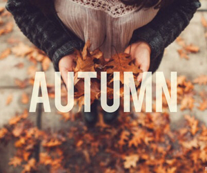 autumn and cute image