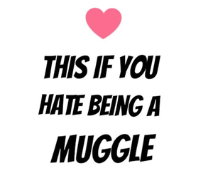 harry potter and muggle image