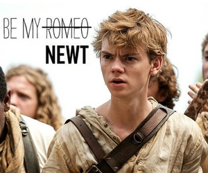 newt, love!, and thomas brodie-sangster image