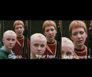 funny and draco image