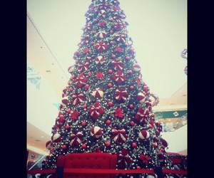 christmas, christmas tree, and giant image