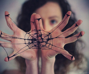 hands, web, and spider image
