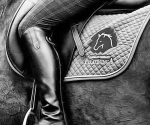 barn, equestrian chic, and equestrian estate image