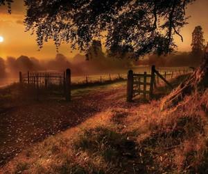 outono, peace, and place image