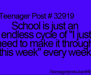 school, true, and week image
