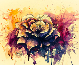 beatiful, drawing, and flower image