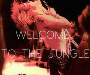 Guns N Roses, gn'r, and welcome to the jungle image