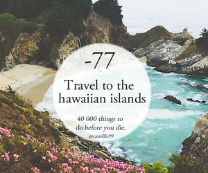 travel, girly, and hawaii image