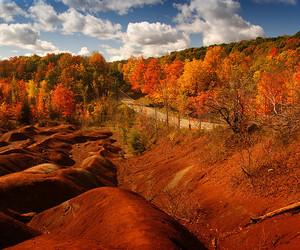 autumn, canada, and ontario image