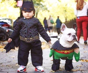 batman, dog, and robin image