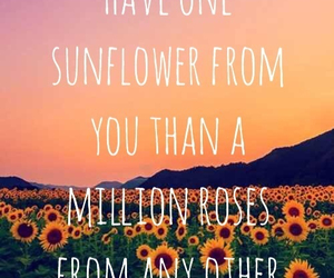 quote, sunflower, and beautiful image