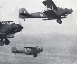 1914, 1917, and 1940 image