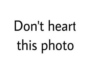 i heart it, heart, and lol image