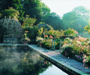 garden, nature, and flowers image