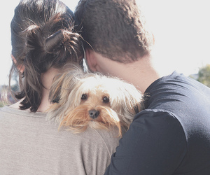 couple, puppy, and melinwonderland image