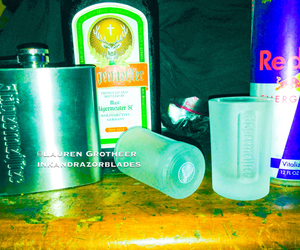 alcohol, bottle, and jagermeister image