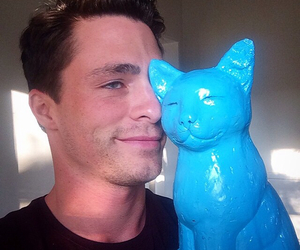 colton haynes, cat, and teen wolf image