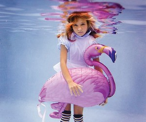 water, underwater, and flamingo image