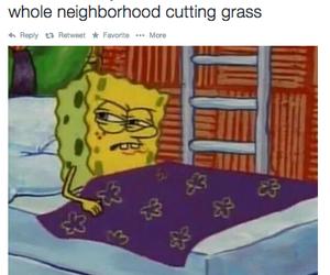funny, spongebob, and lol image