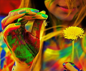 colorful, flower, and colors image