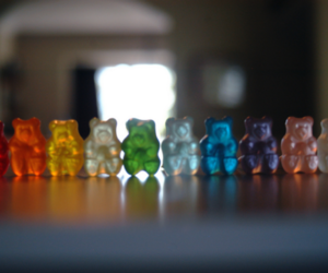 bear, sweet, and gummy bears image