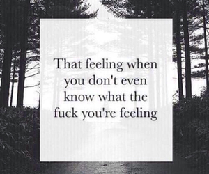 feelings, tumblr, and don't care image