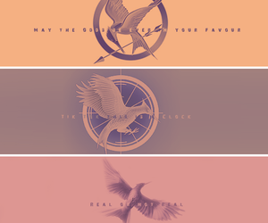 the hunger games, catching fire, and mockingjay image