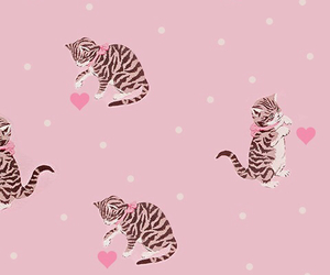 background, cat, and hearts image