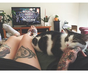 tattoo, cat, and american horror story image