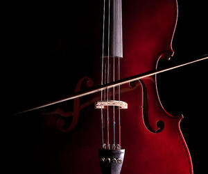 cello, red, and music image