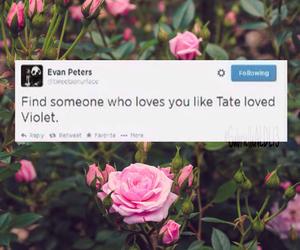 evan peters, roses, and tate image