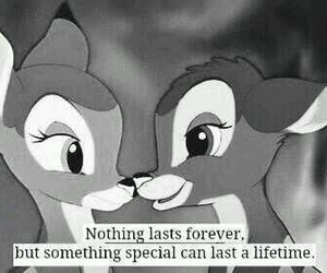 bambi, nothing last forever, and love image