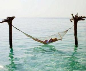 hammock, sea, and ocean image