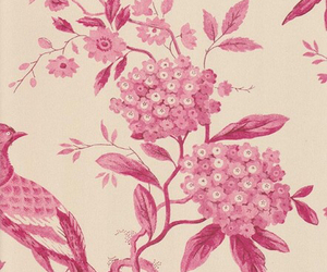 line drawings, pink flowers, and wallpaper image