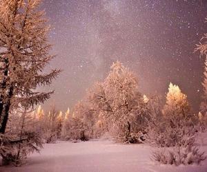 beautiful, stars, and trees image