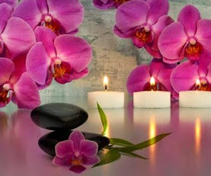 candlelight, purple, and flower image
