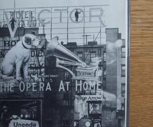 billboards, dog, and vintage image